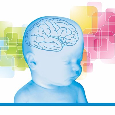 infant brain illustration